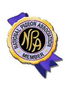 NPA affiliated Club Logo copy